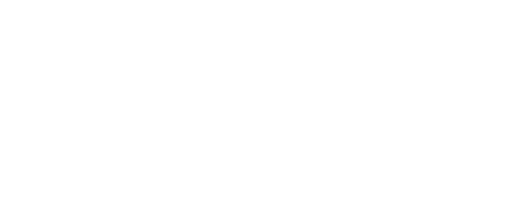 Lili Fashion logo